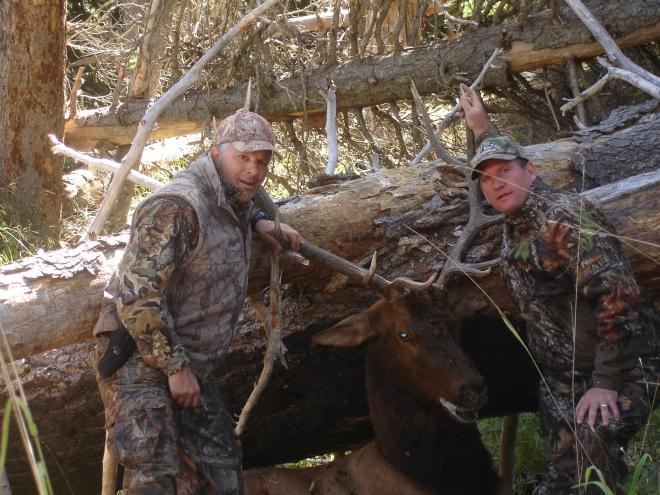 Elk Bow