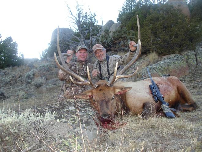 Wyo Bull 2011 029